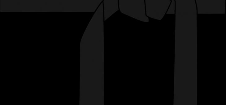 VALIDEZ DE LOS KYUS (grados de cinturón)