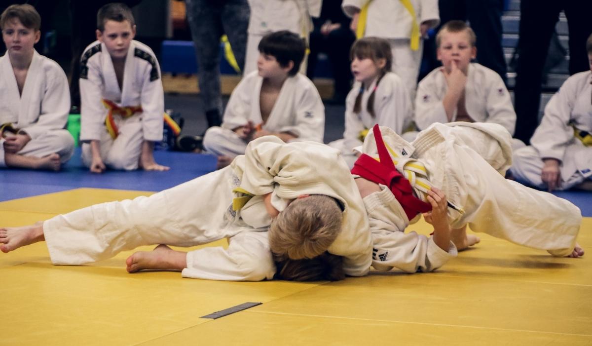 judo-4454835 1920